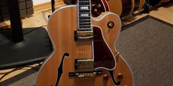 Archtop Gitarre. Creative Music School.
